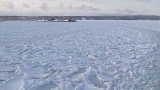 Le ballet des glaces flottantes au Japon