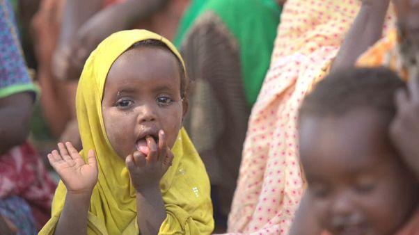 Ethiopia: 3 million internally displaced in escalating humanitarian crisis