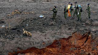 Brezilya'daki baraj kazasında ölü sayısı 100'e yaklaştı