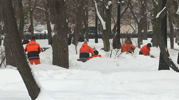 Μόσχα: Παιχνίδι με το χιόνι στον ζωολογικό κήπο