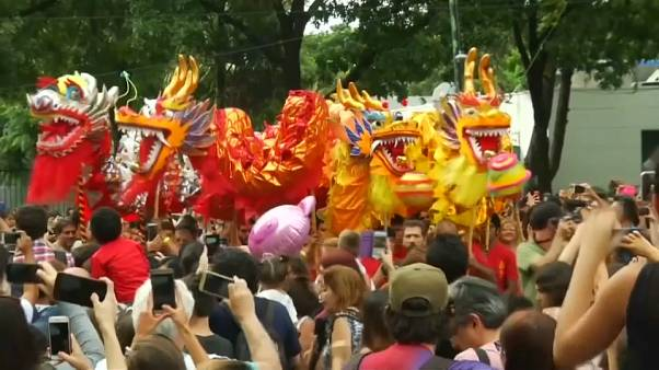 Dancing dragons and lions ring in Lunar New Year in Argentina
