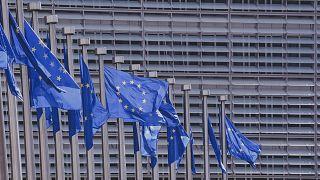 Как европейцы выбирают общий парламент