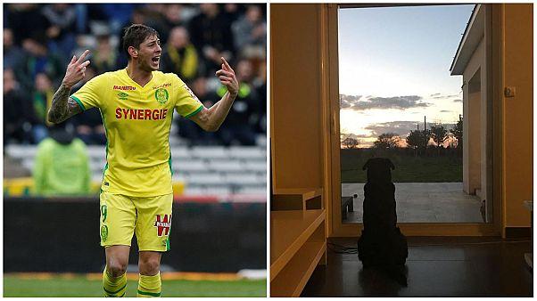 Emiliano Sala'nın köpeği Nala da sahibinin eve dönmesini bekliyor