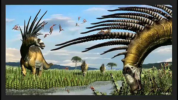 Új dinoszaurusz fajt fedeztek fel Argentínában