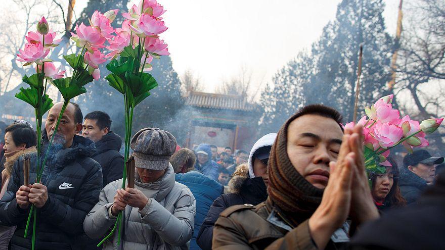 """China feiert das """"Jahr des Schweins"""""""