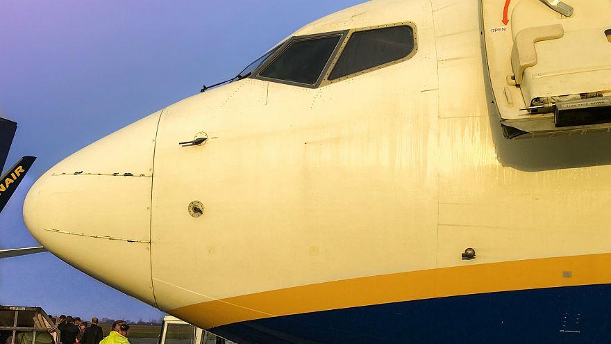 'Stanstead 15' won't face jail time after blocking deportation flight