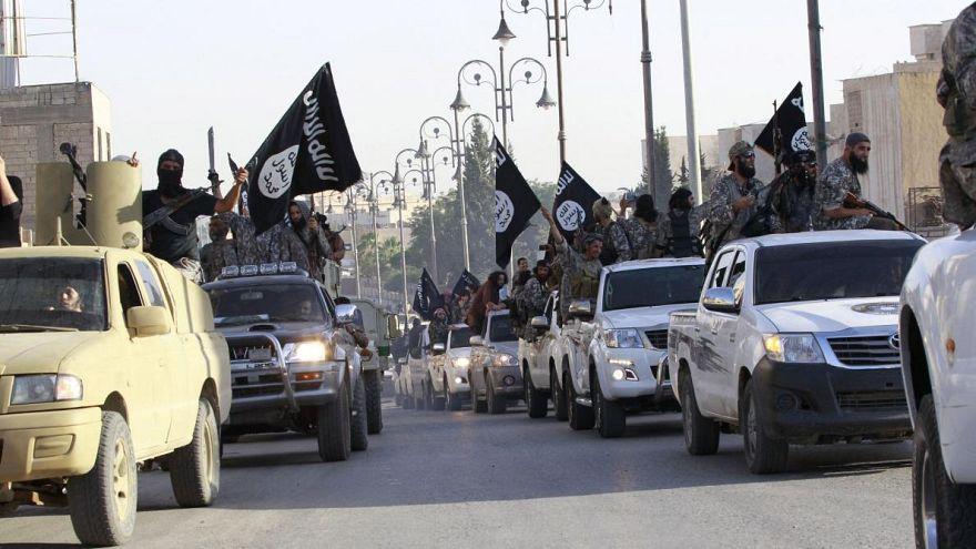 Eski Fransız Belediye Başkanı: IŞİD militanları ülkeye ihanetten idrarlı kurşunla vurulmalı