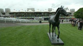 Lóinfluenza: törölték az összes brit lóversenyt