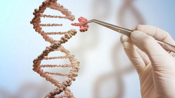 Yetişkin hastalarda ilk DNA mühendisliği tedavisi uygulandı