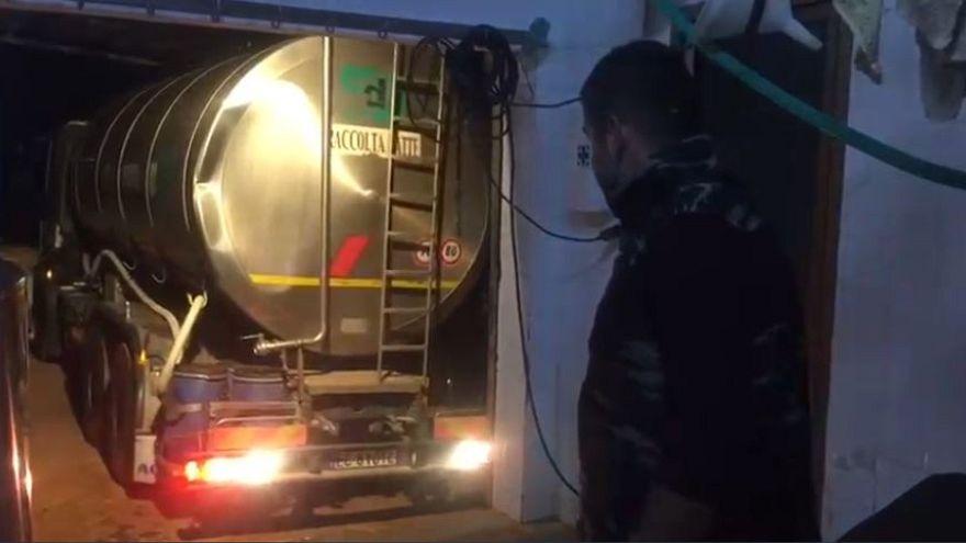 Sardegna, i pastori buttano via il latte per protesta contro il prezzo