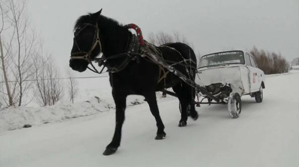 Teacher uses 'horse car' for daily commute