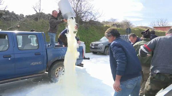 Les producteurs de lait et les éleveurs sardes sont en colère