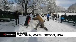 Hundreds take part in large public snowball fight in Tacoma, Washington