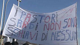 Sardegna, continua la protesta dei produttori di latte