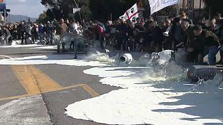 60 Cent pro Liter: Schäfer auf Sardinien gegen zu niedrige Milchpreise