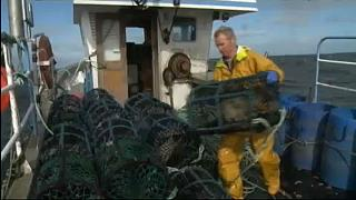 Sweden, UK, Ireland top Northeast Atlantic overfishing 'shame' list