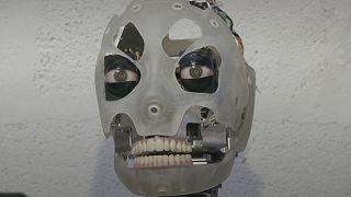 Встречайте Аи-ду - британского робота-художника