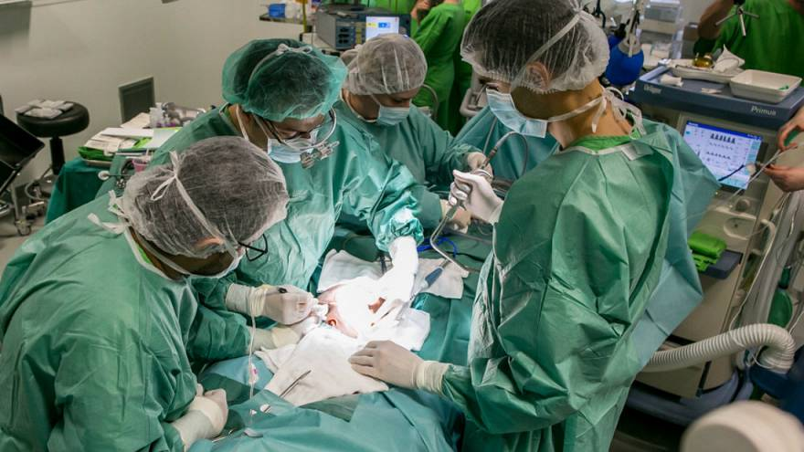 Hungarian doctors complete second phase of operations to separate head-conjoined twins