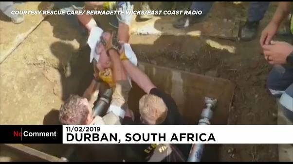 Newborn baby rescued from storm drain in South Africa