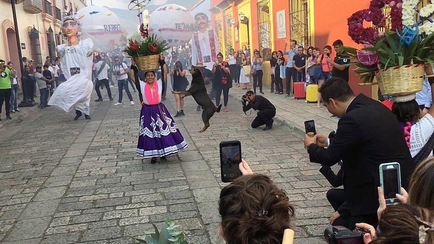 Mazapán, el perro bailarín de Oaxaca