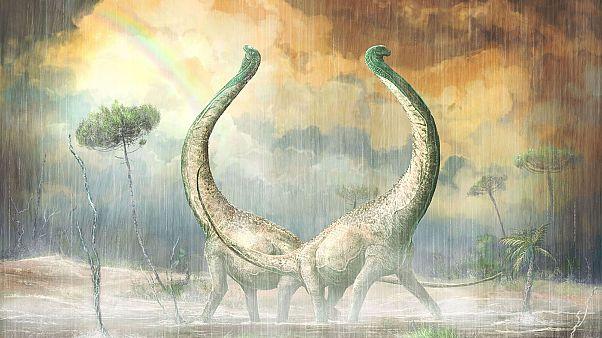 Τιτανόσαυρος Mnyamawamtuka