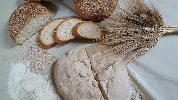 The revival of an elite bread from Sicily