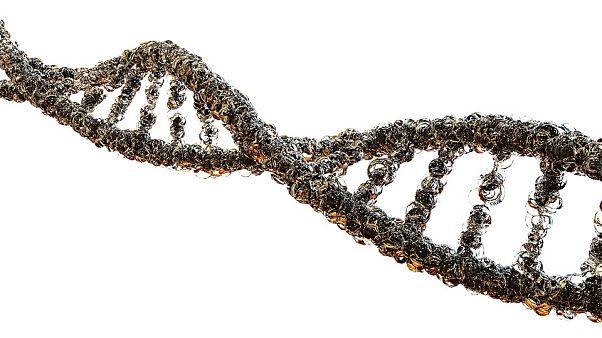 خبراء يضعون معايير عالمية للسيطرة على تعديل الجينات البشرية