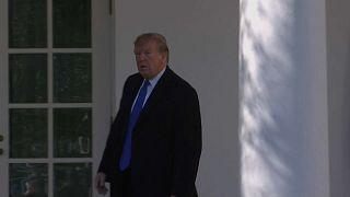 Mauer: Trump will Notstand ausrufen