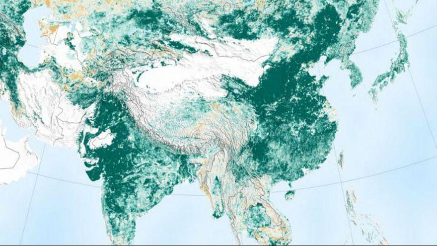 ناسا: کرۀ زمین با تلاشهای چین و هند سبزتر شده است