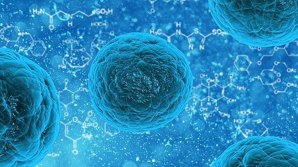 """تجربة يابانية لعلاج أمراض """"النخاع الشوكي"""" بخلايا جذعية اصطناعية"""
