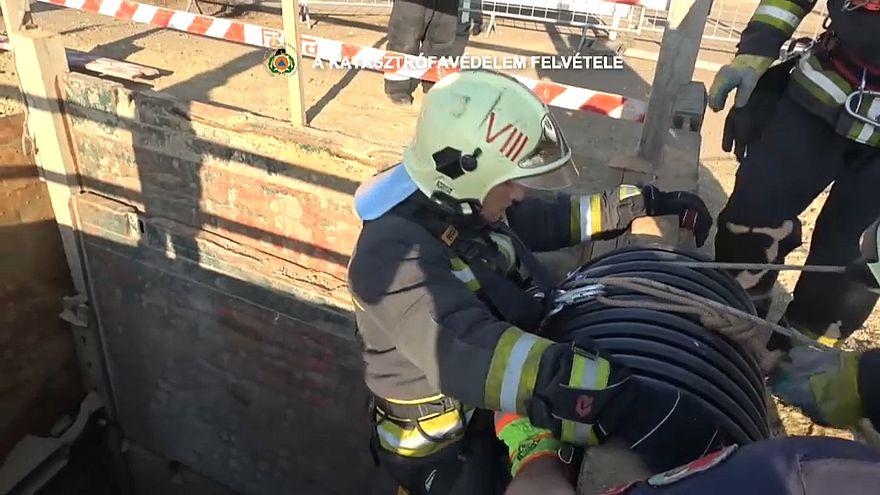 Budapeşte itfaiyesinin kedi kurtarma operasyonu