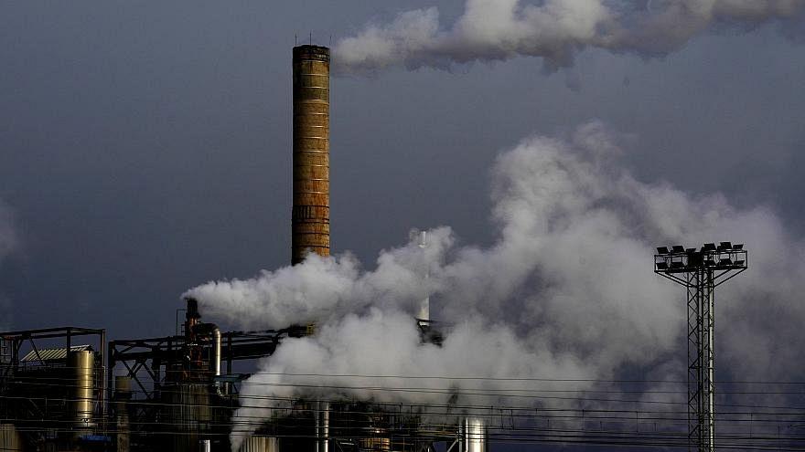 """OECD, Türkiye'ye """"sera gazı emisyonlarını düşürün"""" çağrısı yaptı"""