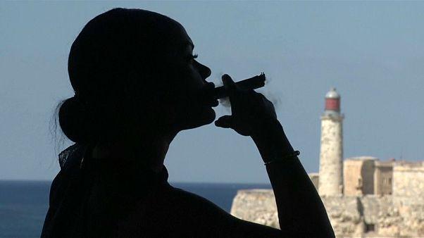 Charutos cubanos com faturações recorde