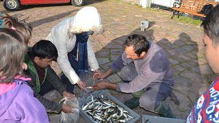 Μυτιλήνη:Ο ψαράς που μοιράζει τα ψάρια του στα προσφυγόπουλα!