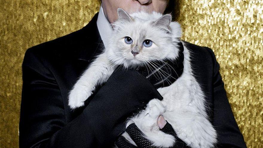 Karl Lagerfeld podría dejar su fortuna a su gata Choupette