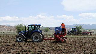 Türkiye'de son 12 yılda çiftçi sayısı yüzde 48 düştü, tarım alanları da azalıyor
