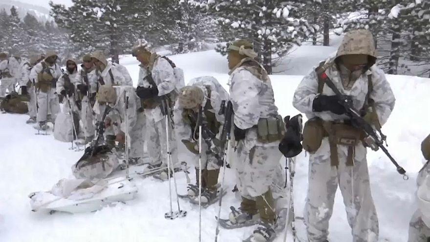 """شاهد: القوات الأميركية الخاصة تجري تدريبات عسكرية في """"بيئة لا ترحم"""""""
