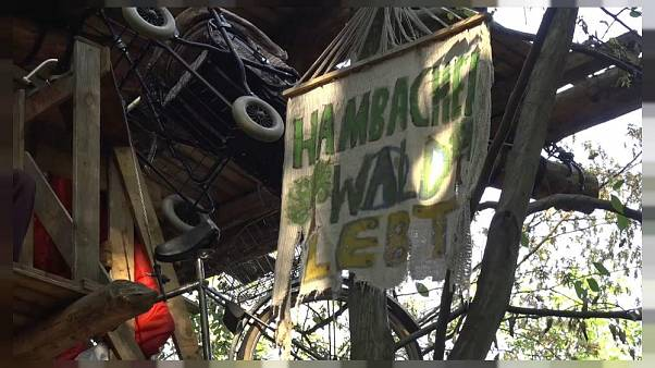 """Widerstand im Hambacher Forst: """"Eule"""" muss 9 Monate in Jugendhaft"""