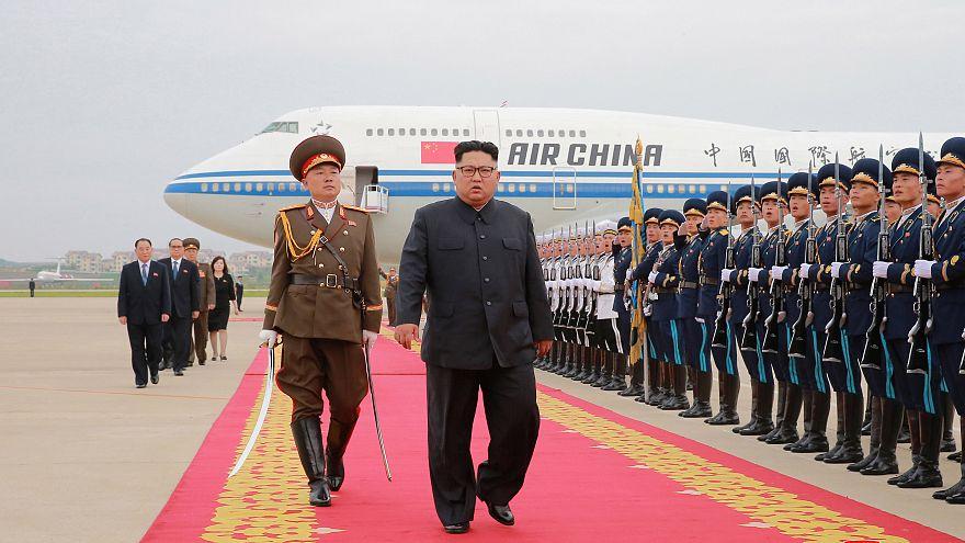 هل اختطفت كوريا الشمالية ابنة الدبلوماسي المنشق في إيطاليا؟