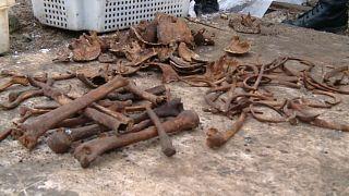 В Бресте найдены останки 600 человек