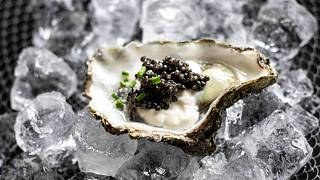 Caviar with compassion is set to revolutionize the delicacy