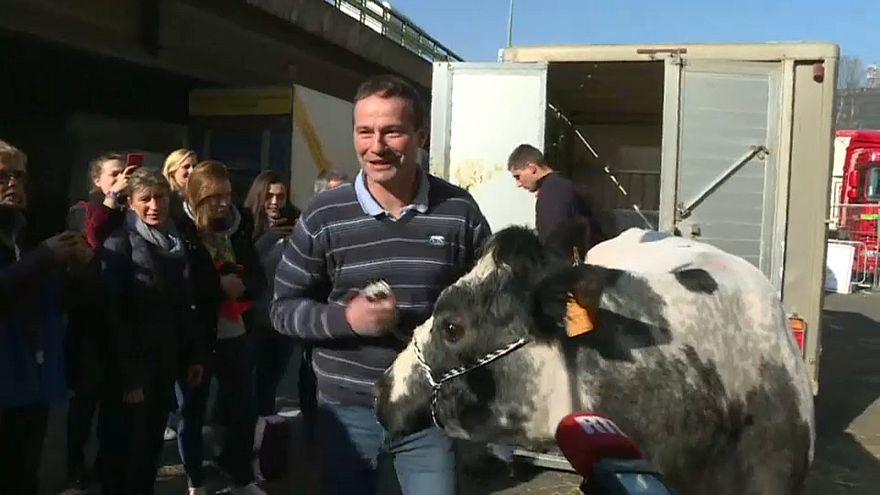Pariser Landwirtschaftsmesse beginnt
