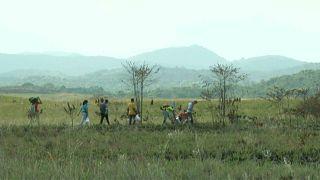 Венесуэла: стрельба на границе с Бразилией