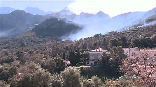 Incêndios devoram 1500ha na Córsega
