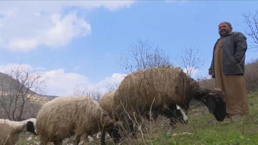 رعاة الأغنام العرب يعودون إلى مروج كردستان بعد رحيل داعش