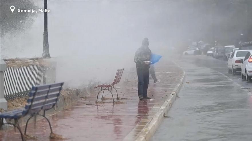 It's 'raining fish' in Malta after storm brings high waves