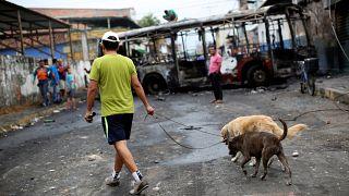 Venezuela: Ekonomik kriz hayvanları da vurdu, milyonlarcası sokağa terk edildi