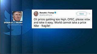 Trump bacchetta l'OPEC e il prezzo del greggio cala