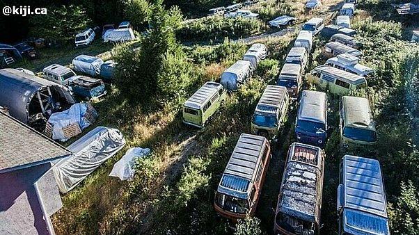 Des dizaines de Combi Volksvagen à vendre... pour 350 000$