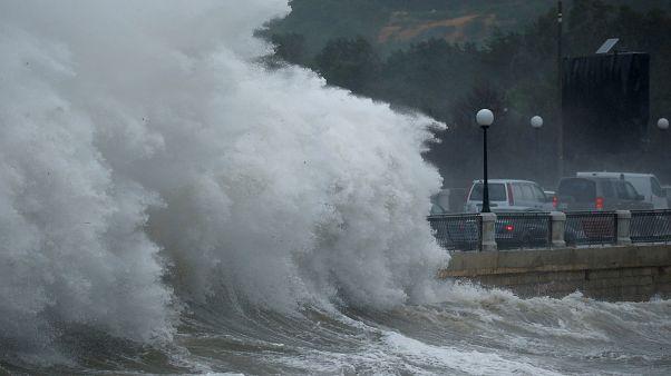 شاهد: السماء تمطر أسماكاً في مالطا!